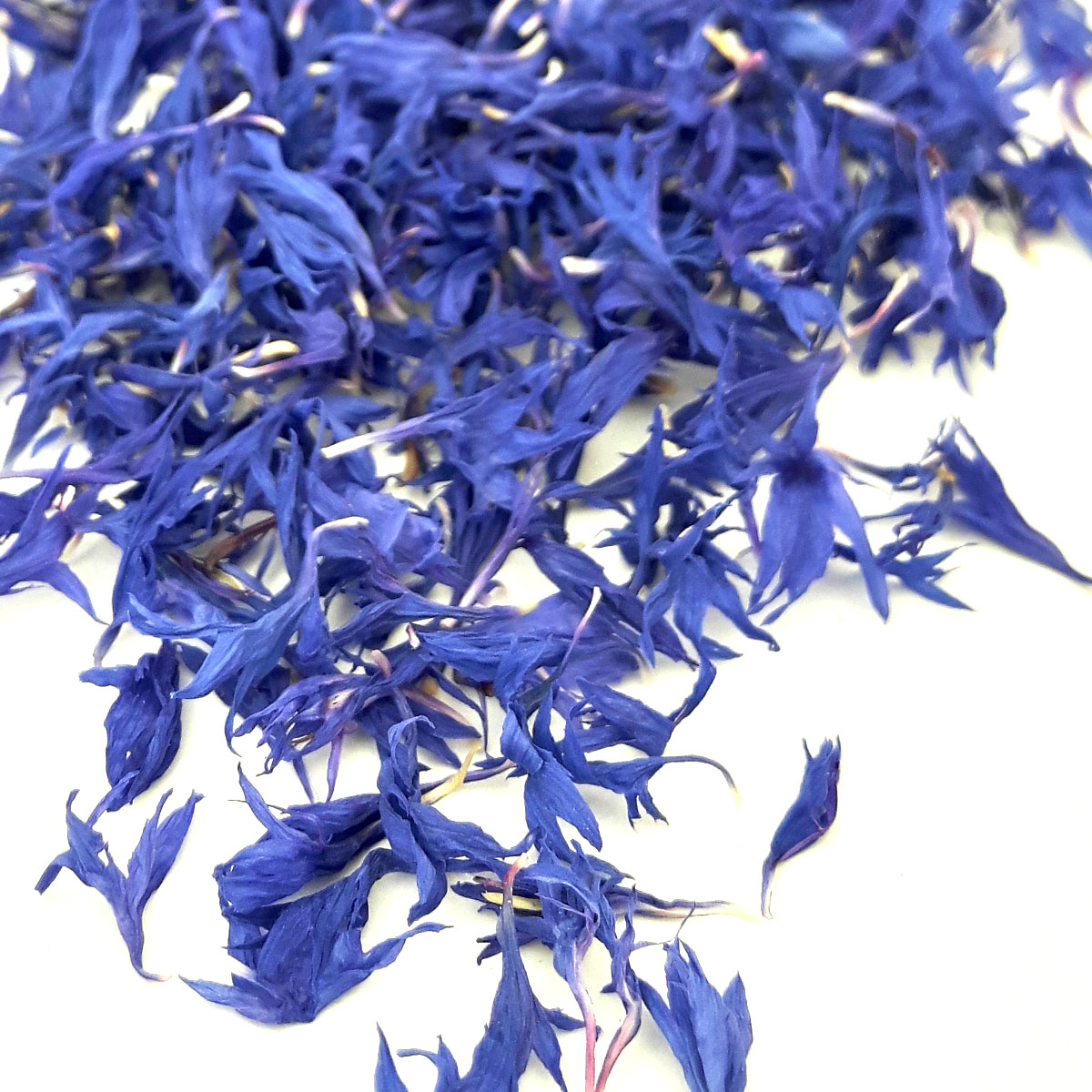 Kornblumen Blau handsortiert